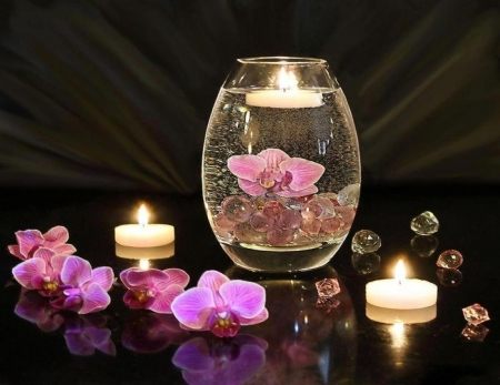 Beauty Of Orchids In Candlelight Flowers Nature Background Wallpapers On Desktop Nexus Image 2117083