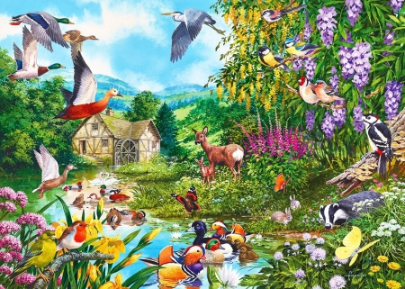 Waters Edge - fawn, ducks, birds, butterflies, artwork, deer, pond, watermill, chickadee, painting, flowers