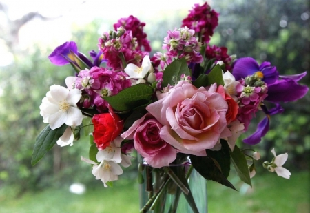 Bouquet - red, colorful, freshnes, various, mixed, flowers, beauty, pink, fresh, different, roses, water, purple, bouquet, garden, petals, glasss