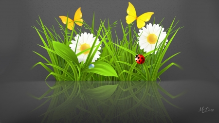 Spring Summer Reflected - daisies, ladybug, chamomiles, summer, flowers, spring, butterflies, reflection
