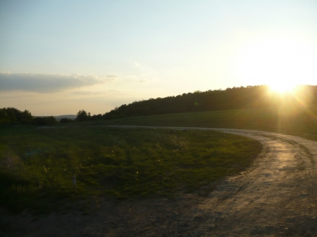 sunny road - sunny, sun, forest, meadow, sunset, beautiful, field, road, nature