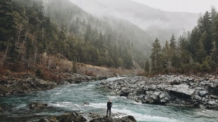 River - water, River, nature, trees, fog, landscape, mountain range