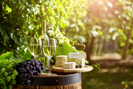 Cheese and Wine - food, drinks, wine, summert, sunny, fruit, grape, tree, cheese, drink