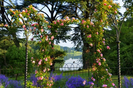 Blenheim palace, rose arch - pretty, view, beautiful, spring, park, roses, palace, lake, arch, summer, garden