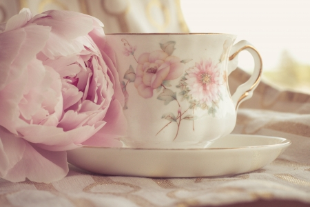 ღ - still life, pink flower, flowers, cup, nature, petals, tea
