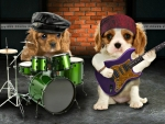 Bad Dogs Band