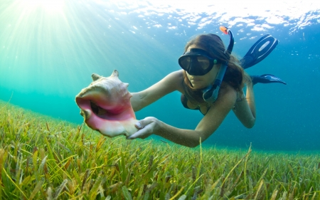 Scuba Diving - babe, ocean, woman, outdoors, water, shell, Scuba Diving, nature, lady, swimming, activity, hobby