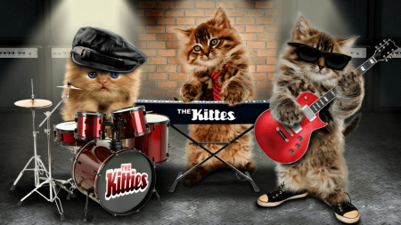 The Kittes - red, music, band, drum, cat, creative, hat, sunglasses, cute, the kittes, fantasy, guitar, instruments, funny, kitten, pisica
