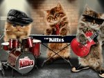 The Kittes