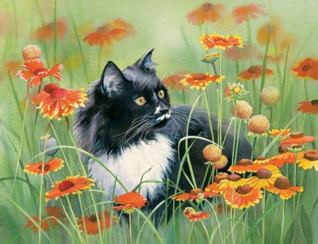 Image result for roses with cats summer