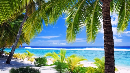 Tropical Island - shore, seascape, coastline, tranquility