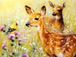 Lovely Deers