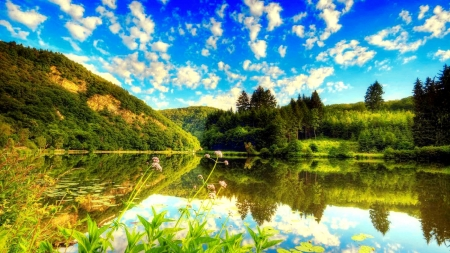 Tranquility - mountain, shore, serenity, greenery, wildflowers, beautiful, sky, tranquility