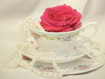 Cup of Rose