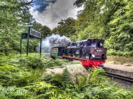 steam train in a forest hdr - Other & Cars Background Wallpapers on Desktop Nexus (Image 2127733)