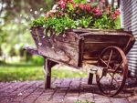 vintage wagon flower pot