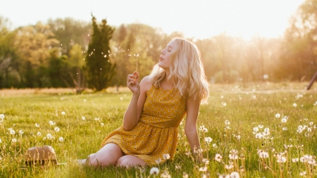Make A Wish **** - dandelion, girl, enjoyment, spring day, spring, field, mood