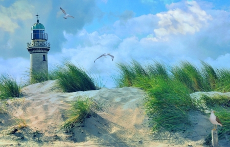 Home of lonely souls - birds, nature, sky, lighthouse