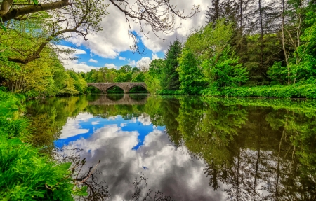 Bridge over river - forest, greenery, beautiful, trees, sky, lake, serenity, bridge, river, tranquility