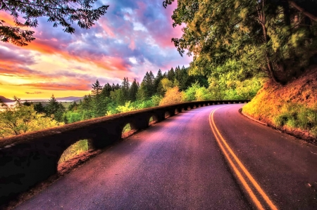 Road along the Sunset - Sunset, Trees, Sky, Nature