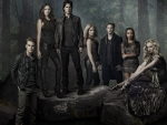 The Vampire Diaries (TV Series 2009– )