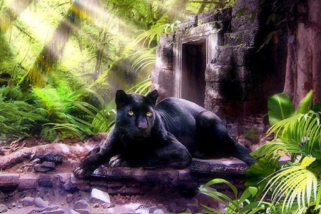 Black Panther - draw and paint, love four seasons, rays light, black panther, big wild cats, paintings, summer, tropical, cats, animals