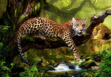 King of Jungle - draw and paint, love four seasons, tiger, big wild cats, paintings, summer, jungle, forests, tropical, cats, animals