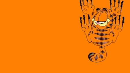 Garfield Cats Animals Background Wallpapers On Desktop Nexus Image 2133168