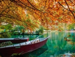 rowboats in a park lake in autumn