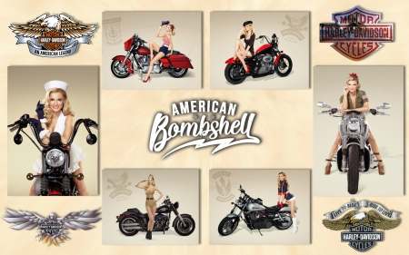 The American Bombshell - davidson, blonde, harley, motorbikes