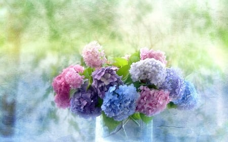 Hydrangea - still life, bpuquet, flowers, blossoms, vase, petals, artwork