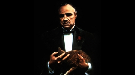The Godfather (1972) - The Godfather, movie, film, cat, legendary, 1972, Marlon Brando, wallpaper, The Godfather Part 1, Mafia, gangster, The Mob