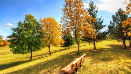 Autumn Park - grass, bench, park, trees, sky