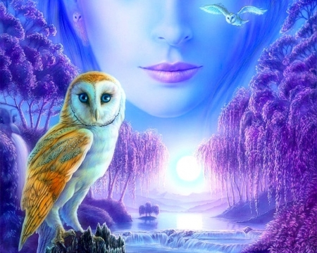 Moonlit Owl - moons, colors, love four seasons, attractions in dreams, trees, owls, fantasy, purple, animals, rivers, blue
