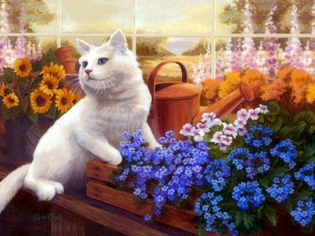 White Cat of Greenhouse - draw and paint, kitty, white cat, love four seasons, watering can, paintings, summer, flowers, cats, animals