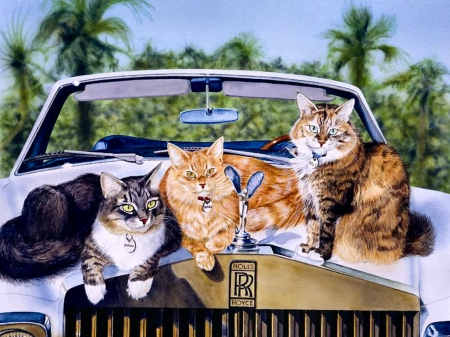 On Vacation F1Cmp - art, beautiful, cat, illustration, artwork, Roll Royce, pet, feline, automobile, car, painting, auto, wide screen