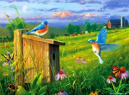 Evening meadow - pretty, art, wings, grass, flight, birds, freshness, gathering, wildflowers, painting, birdhouse, evening, meadow