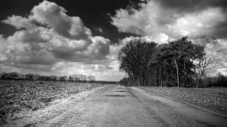 clouds over a country road in monochrome - sky, clouds, field, road, monochrome, tree