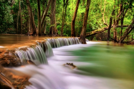 Waterfalls  - river, cascade, trees, thailand
