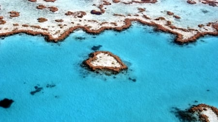 Heart reef, Great Barrier Reef - Heart Reef, Great Barrier Reef, Australia, Reef