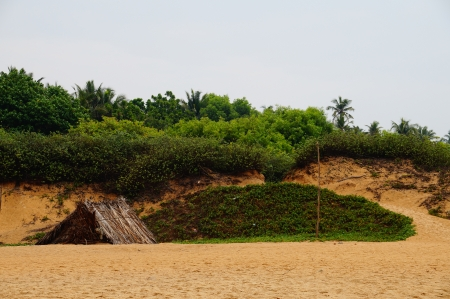Come into my world - sand, hut, green, leaf