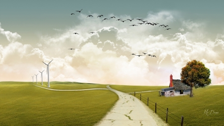 Past and Present - technology, windmills, vintage, birds, sky, Firefox Persona theme, old house, field, country, tree