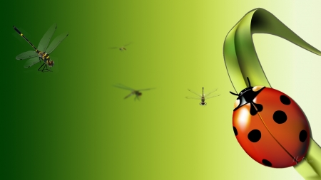 Just Bugs - leaf, ladybug, green, spring, summer, dragonflies