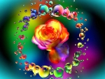 Rose Surrounded by Rainbow Bubbles