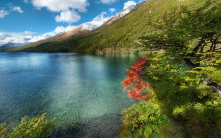 a lake in the mountains - fun, cool, forest, nature, mountain, lake