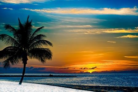 Key West Sunset Florida Sunsets Nature Background