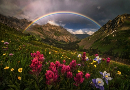 Beautiful Scenery - mountain, flowers, beautiful, rainbow, scenery