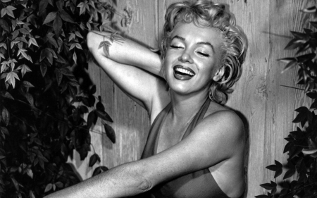 marilyn monroe - blonde, monroe, girl, marilyn