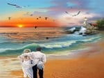 couple,romance,beach,birds,
