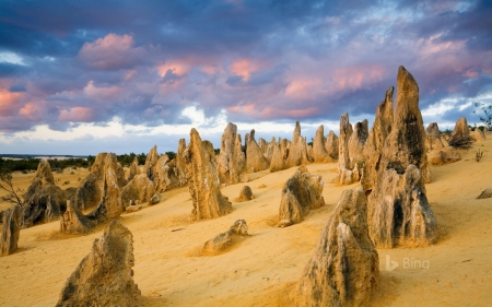 The Pinnacles in Nambung National Park Western Australia - in, The, Namburg, Pinnacles, Western, Park, National, Australia